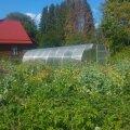 Permakultuuri aed võib esmapilgul tunduda hooldamata, isegi mahajäetuna, kuid üksnes pealiskaudsel vaatamisel. Eri taimeliikide läbisegi kasvatamine aitab vähendada ka taimehaiguste ja -kahjurite levikut