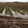 Andurid näitavad põllu veevaru.