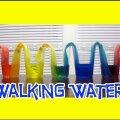 Teadlane katsetab: Vaata kas tõesti vesi kõnnib