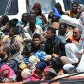 Migrandid Vahemerel