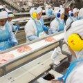 Maailma suurim lihatööstusettevõte langes küberväljapressimise ohvriks, mis arvatakse lähtuvat Venemaalt