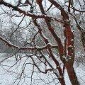 Punane kask paistab lume taustal hästi välja.