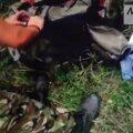 VIDEO: Uus salvestus näitab Ida-Ukraina mässulisi sorimas alla tulistatud lennuki reisijate pagasis