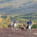 Tsaatan nomadite élu Mongoolia tundras