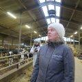 Tiina Roosalu juhitud Nigula Piima Leediküla farmis on heakord ning loomade heaolu väga kõrgel tasemel.