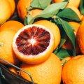 Toitumisnõustajad: milliseid vitamiine peaks iga eestlane võtma?