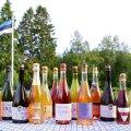 EESTI TOODE: Testitud sai kuue Eesti vahuveinitootja jooke: Jaanihanso, Mamm&Frukt, City Cider, Nudist, Tori Siidrifarm, Valgejõe Veinivilla.