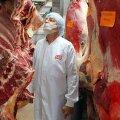 Директор мясокомбината: мы отсылали испорченное мясо крупными партиями обратно поставщику