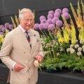 Мода от принца Чарльза. Наследник британского престола представил коллекцию одежды