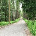 В День восстановления независимости откроется тропа здоровья болота Ыйсмяэ