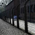 Iisraeli välisminister: poolakad imevad antisemitismi sisse emapiimaga