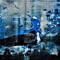 Bitcoini turu õudusunenäod: Vaalad ja Hoidjad