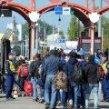 Sisserändajad oktoobris Horvaatia-Ungari piiril