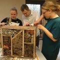"""День полезных дел """"Сделаем! 2+2"""" удался на славу: создано 792 лужайки, 455 ящиков для компоста и 443 гостиниц для насекомых"""