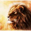 Täna toimub Kuu loomine Lõvi sodiaagimärgis | Esiplaanil on suhtlemine ja armastusega seotud teemad
