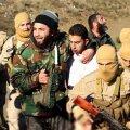 Islamiriik tulistas alla Jordaania hävitaja
