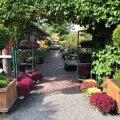 Rannamõisa aia- ja lillesalong