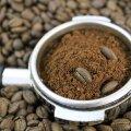 Kasutatud kohvipaks võib aednikule abiks olla.