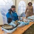 Leppneeme kalasadamate päev 2017