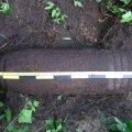 Saaremaalt leiti eile neli mürsku ja üks tankitõrjemiin