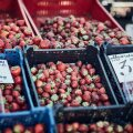 Maasikad turul