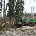 Metsanduses määravad efektiivsus ja turvalisus