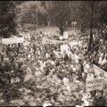 Hirvepargi miitingul peeti kõnesid ja avaldati meelt, et avalikkusele meenutada 1939. aasta kurikuulsa salatehingu Molotovi ja Ribbentropi pakti sisu – Baltimaade, sh Eesti iseseisvusele lõpu tegemist.