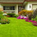 TASUB TEADA | 12 suuremat viga, mida aeda kujundades tegema kiputakse