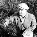 Neeme Mikelsaar (5. august 1910 – 22. oktoober 1990)