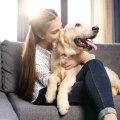 Täna on rahvusvaheline koerte päev: 10 fakti meie neljajalgsete lemmikute kohta
