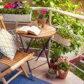 Milliseid lilli ja taimi istutada kevadel rõdule ja terrassile?