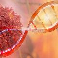 TERVISEUUDISED | Tehisintellekt aitab luua uusi vähiravi meetodeid