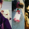 Hispaania politsei tappis Barcelonas eestlasest kodutu noormehe koera