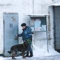 Julm teismeline mattis Murmanskis oma 11-aastase ohvri lume alla, arvates, et tappis ta