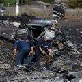 """В МИД Нидерландов заявили, что пока """"убедительных доказательств"""" вины Украины в катастрофе MH17 нет"""