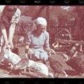 Kaks naist kalkuneid toitmas, 1939