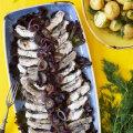 TUULUTAME RETRORETSEPTE! Nostalgiahõngulised toidud, mida suvel valmistada
