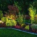 ФОТО | Устали от пасмурной осенней погоды? Хорошее освещение способно полностью преобразить ваш сад