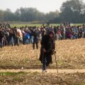 Euroopa Liidu ja Balkani minitippkohtumisel lepiti kokku peavarju andmises veel 100 000 põgenikule
