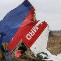 Кто сбил самолет над Донбассом? Промежуточные итоги слушаний по делу MH17