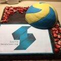 """Kirjaga """"Saarte Investeering"""" ja võrkpalli kujutisega tort tehti valmis ning tuleb nüüd siiski ära süüa."""