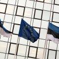 Eesti ja Euroopa Liidu lipp