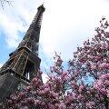 Франция вводит жесткие ограничения. Путешествия без уважительных причин запрещаются