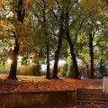 Oktoobri keskel võib Eestis ka päikest näha