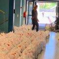 Pirital jagati kahe kuu jooksul õpilastele ligi 5500 koolilõuna pakki