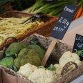 Maasikad ja muud eestimaised juur- ja köögiviljad