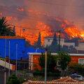 VIDEO | Kanaaride vulkaani laavavool liigub mere suunas, inimesed ohus ei ole