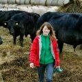 Puhtatõuliste lihaveiste müügiga teenitakse keskmiselt kaks korda rohkem kui ristandloomade müügiga, leiab Jane Mättik