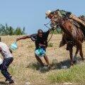 """VIDEO   Tuhanded Haiti migrandid liiguvad USA piiri suunas: """"Surm on kodumaale naasmisest parem!"""""""
