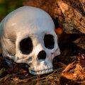 Põhja-Lätist avastati maailma vanim katku surnud inimene